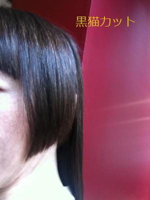 髪型の変遷! 劇的ビフォーアフター みたいなやつ