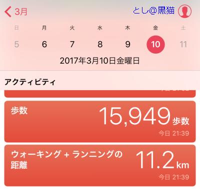 お台場 ポケモン GO