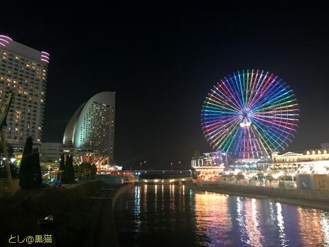 夜の日本丸散歩ワークアウト
