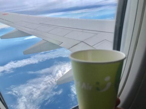 【保養旅行】 石垣島 マクロ その1