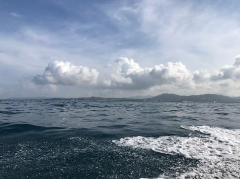 【保養旅行】 石垣島 マクロ その2