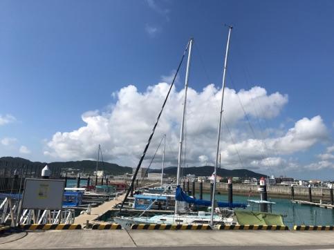 【保養旅行】 石垣島 マクロ その3