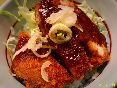 若鯱家 カレーうどん + ミニ味噌かつ丼