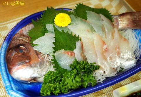 近海もの(神奈川産)真鯛のお造り
