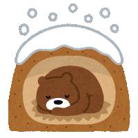 冬眠中のクマ