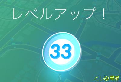 レベル 33