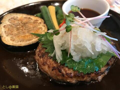 国産牛と鹿児島黒豚の薬味たっぷり おろしハンバーグ(ポン酢だれ)