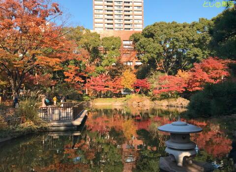 横浜公園で紅葉